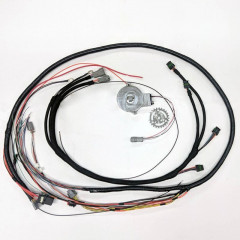 CAS & Expansion Coil/Ignition Harness Kit | 4 Cyl | PiMPx | PiMPxs