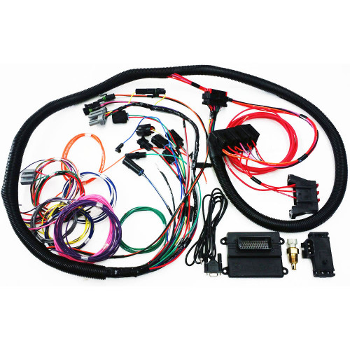 Microsquirt Plug & Play Standalone Engine Management + Harness (2.3L - Entry Level)